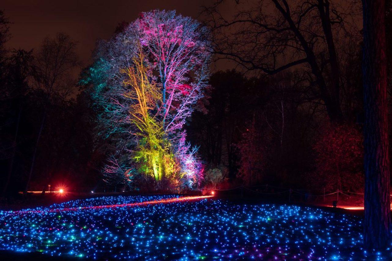 Ботанический сад Мадрида световое шоу